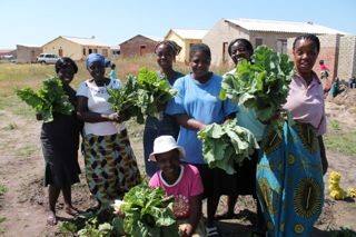 Volunteers and caregivers with their first veggie crop